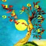 numerologia numerodanza